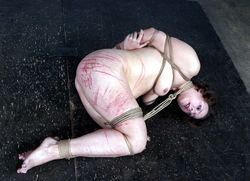 Gagged and blindfolded slave roped and..